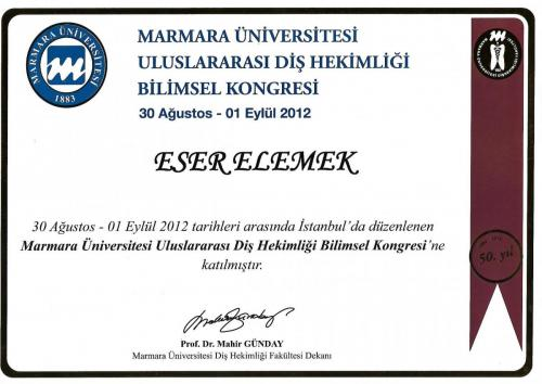 Eser Elemek Marmara 2017