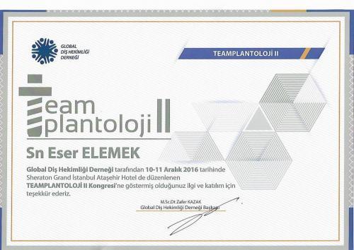 Teamplantoloji 2016